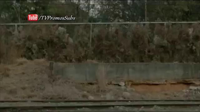 The Walking Dead - Season 5 - New Zealand Promo